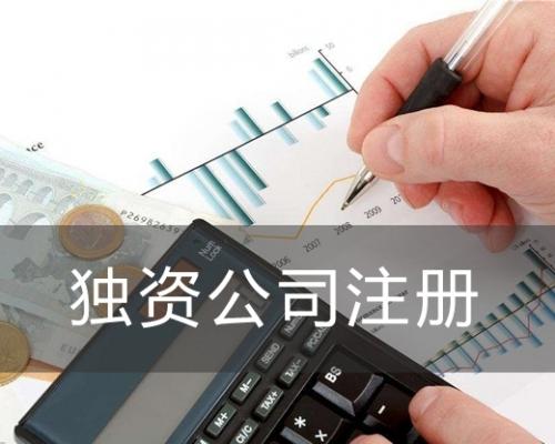 独资公司注册流程